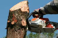 free Belfast tree removal quotes